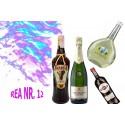 REA NR. 12